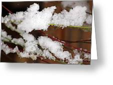 Snow Twig Abstract Greeting Card
