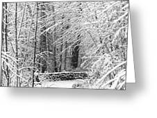 Snow Wall Greeting Card