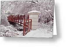 Snow Way Or No Way Greeting Card by Irfan Gillani