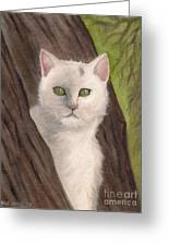 Snow White The Cat Greeting Card by Kostas Koutsoukanidis