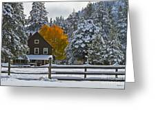 Snowed In At The Ranch Greeting Card