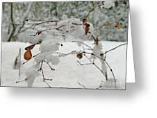 Snowed Under Greeting Card