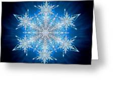 Snowflake - 2012 - A Greeting Card by Richard Barnes