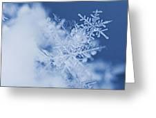 Snowflakes 2 Greeting Card