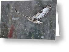 Snowing Flight Greeting Card
