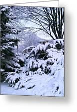 Snowmageddon 2014 Greeting Card
