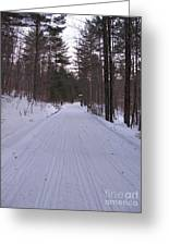 Snowmobile Trail Greeting Card