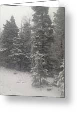 Snowscape Taos Greeting Card by Bobbi Bennett