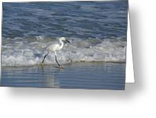 Snowy At The Beach Greeting Card