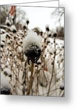 Snowy Cap Greeting Card