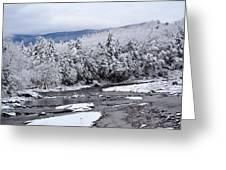 Snowy Catskill Creek  Greeting Card