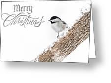 Snowy Chickadee Christmas Card Greeting Card