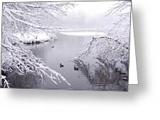 Snowy Day Ducks Greeting Card