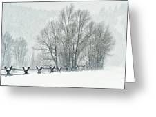 Snowy Day In The Tetons Greeting Card by Sandra Bronstein