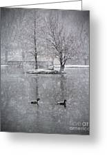 Snowy Day On The Island Greeting Card
