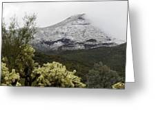 Snowy Desert Mountain 1 Greeting Card