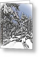 Snowy Dreams  Greeting Card