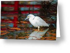 Snowy Egret Stalking His Lunch Greeting Card