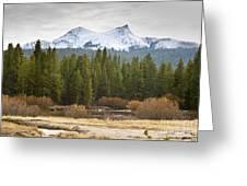Snowy Fall In Yosemite Greeting Card