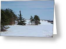 Snowy Hillside With Evergreen Trees And Bluesky Greeting Card