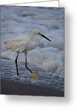 Snowy In The Surf Greeting Card
