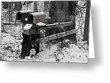 Snowy Mailbox Sc Greeting Card