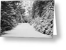 Snowy Mountain Road - Black And White Greeting Card