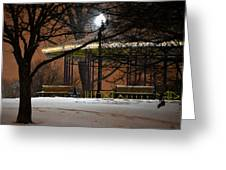 Snowy Night In Leone Riverside Park Greeting Card