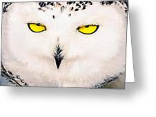 Artic Snowy Owl Painting Greeting Card