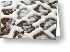 Snowy Path And Paw Prints Greeting Card