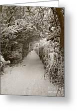 Snowy Path Greeting Card