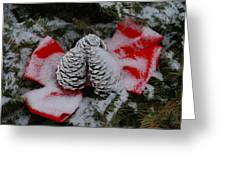 Snowy Pinecones Greeting Card