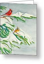 Snowy Pines And Cardinals Greeting Card