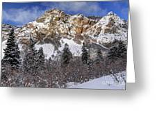 Snowy Ridge Above Bell Canyon - Wasatch Mountains - Utah Greeting Card