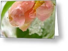Snowy Spring 2 - Digital Painting Effect Greeting Card