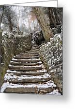 Snowy Steps Greeting Card