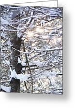 Snowy Sunbursts Greeting Card