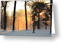 Snowy Sunrise In Tower Grove Park  Greeting Card