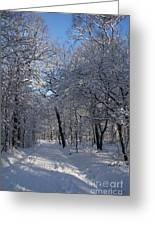 Snowy Trail Greeting Card