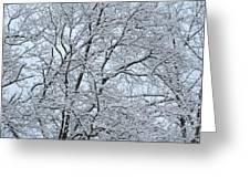 Snowy Tree Limb Maze Greeting Card