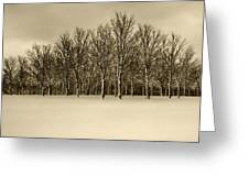 Snowy Tree Line - Sepia Tint Greeting Card