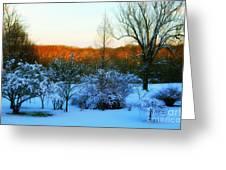 Snowy Trees In December Twilight - Pearl S. Buck Homestead Greeting Card