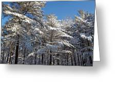 Snowy Treetops Greeting Card