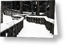 Snowy Walkway Greeting Card