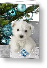 Snowy White Puppy Present Greeting Card