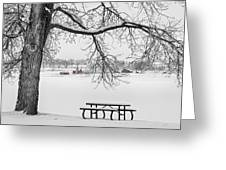 Snowy Winter Country Cottonwood Tree View Bwsc Greeting Card by James BO  Insogna