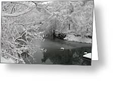 Snowy Wissahickon Creek Greeting Card by Bill Cannon