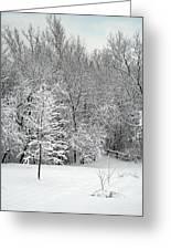 Snowy Woodland Greeting Card