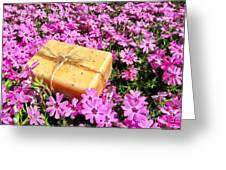 Soap On Flowers Greeting Card