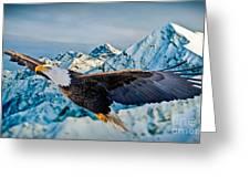 Soaring Bald Eagle Greeting Card by Gary Keesler